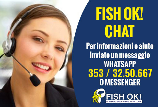 FISH OK CHAT