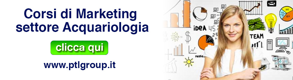 banner corsi marketing