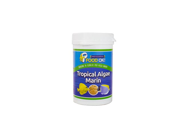 tropical_algae_marin